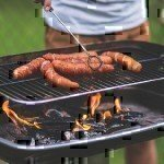 vets guide to grilling