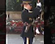tomb of the unknown soldier with a pistol and rifle